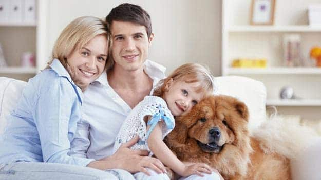 Wills & Trusts dog-young-family Direct Wills Shoreham-by-Sea